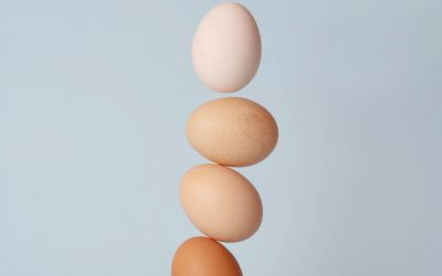 Τα αυγά στην ζωή μας (Νέα Μελέτη)